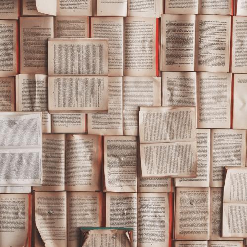 7 könyv egy francia nő polcáról, amit mindenkinek el kell(ene) olvasni